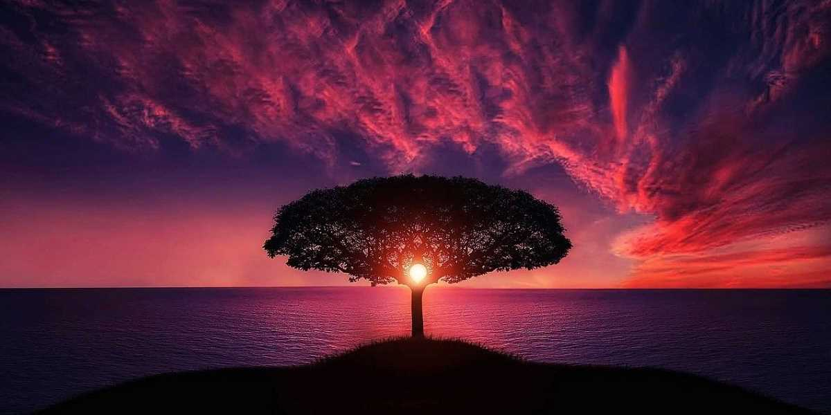 Harmonie avec soi et avec tout ce qui nous entoure -Happy Yoga
