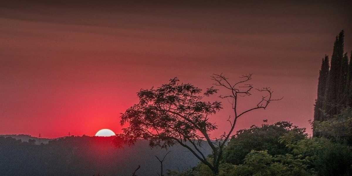 Nouvelle lune du 21 juin - Happy Yoga