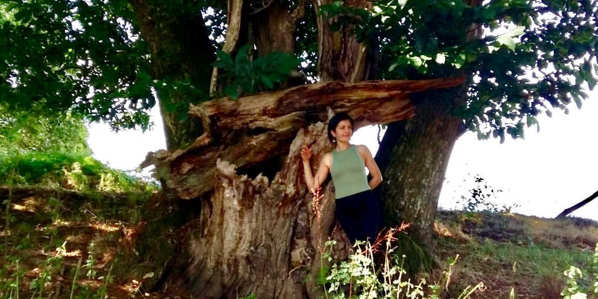 Yoga en plein air et pique-nique - Happy Yoga